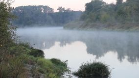 Morning on the river early morning reeds mist fog. And water surface on the river stock video