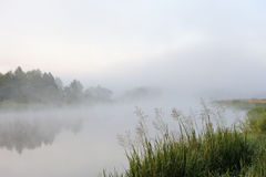 Morning river mist Stock Photos
