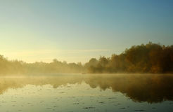 Morning on river Stock Image