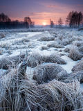 Morning river. Winter morning river and sunrise in Poland Royalty Free Stock Image