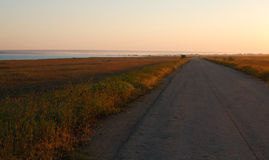 Morning road. Road in steppe flooded with sunrise light Stock Photo