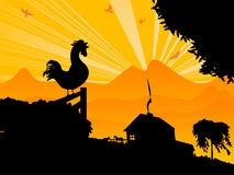 Morning rooster. Farm landscape with a morning rooster Royalty Free Stock Photos