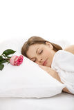 Morning rose Royalty Free Stock Image
