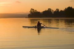 Morning rower Stock Image