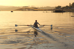 Morning rower and bridge Stock Images