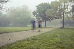 Morning run in the park Royalty Free Stock Image