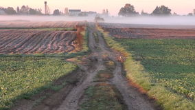 Morning rural field and road in autumn frost and mist. Morning rural farm field and road in autumn frost and mist stock footage