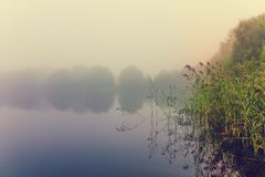 Morning`s fog over the lake royalty free stock photo
