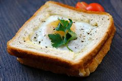 Morning sandwich with egg and tomatoes. Good quality bright and positive close up photo of a morning sandwich: classic white toast with buttered golden edges and Stock Photo