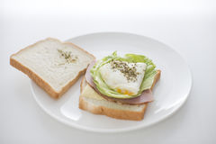 Morning sandwich showing content Stock Image