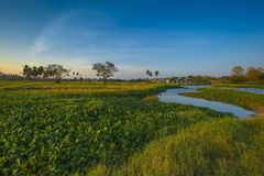 Morning scene at the village. Small village in the morning with beautiful sky and panorama Royalty Free Stock Images