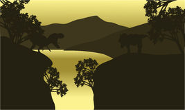 At morning scenery T-Rex silhouette Royalty Free Stock Photo