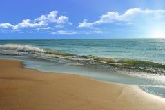 Morning seaside royalty free stock image