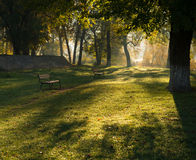 Morning shadows over green grass in a park. With benches Stock Image