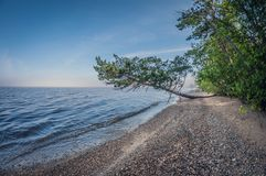 Morning on the shore of a beautiful lake, landscape stock photography