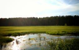 Morning in siberia royalty free stock photos