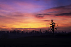Morning Sky. A digital image of a morning sky over the north of england royalty free illustration