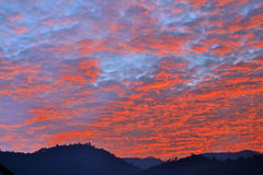 Morning sky Royalty Free Stock Photo