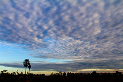 Morning sky clouds Royalty Free Stock Photography
