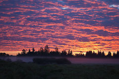Morning sky with colored clouds and mist in the fields Royalty Free Stock Images