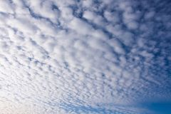 Morning Sky With A lot Of White Clouds Royalty Free Stock Images