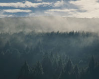 Fresh morning sky with forest in mountains Royalty Free Stock Images