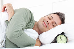 Morning snooze Stock Image