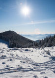Morning snow-covered forest and mountain range of Montenegro in the distance. Carpathians. Ukraine Royalty Free Stock Image