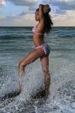 Morning Splash Stock Image