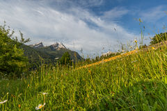 Morning spring in German Alps Royalty Free Stock Images