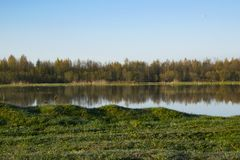 Morning dawn, spring flowering, landscape. royalty free stock photos