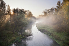 Morning summer river Stock Photography
