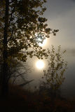 Morning sun. Sun light on a fogy morning royalty free stock images