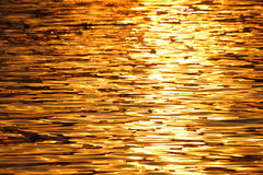 The morning sun light is reflect on the river Royalty Free Stock Photo