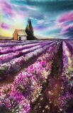 Morning sun over the landscape with a lavender field. Watercolor illustration for postcards, printing, scrabbuking and royalty free stock images