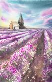 Morning sun over the landscape with a lavender field. Watercolor illustration for postcards, printing, scrabbuking and. Various backgrounds. Provence at sunset Stock Images