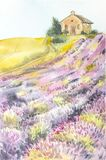Morning sun over the landscape with a lavender field. Watercolor illustration for postcards, printing, scrabbuking and stock illustration