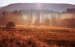 Morning sun rays in the fog mountains house. Early morning sun rays illuminate the dawn beautiful Carpathian landscape in the mist on the background of ancient Royalty Free Stock Photography