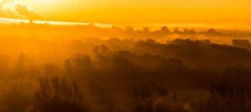 Morning sun rays through misty woods creating a golden haze Stock Photography
