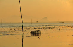 Morning sun and sea Royalty Free Stock Photo