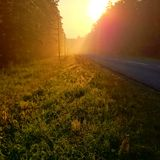 Morning sun sunrise early road fog foggy dew Stock Photos