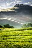 Morning sun warming the Tuscan fields Royalty Free Stock Photography