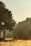 Morning sunlight in camping site Stock Photos
