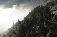 Morning Sunlight Come Out FromMountains. Morning Sunlight Come Out From The Misty Mountains No.2 Stock Photography