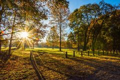 Morning Sunlight In Park. Bright sunshine and an early morning view of Thompson Grove Park in Manalapan New Jersey Stock Photography