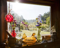 Morning Sunlight Still Life Royalty Free Stock Photo