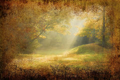 Morning sunrays falling on a forest glade. On grunge background Stock Photo