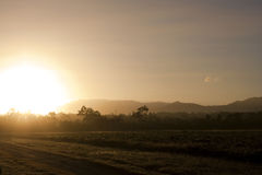 Morning Sunrise in Australia Royalty Free Stock Photo