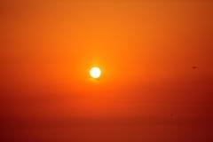 Morning sunrise and flying birds Stock Photo