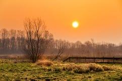 Morning sunrise landscape Stock Images